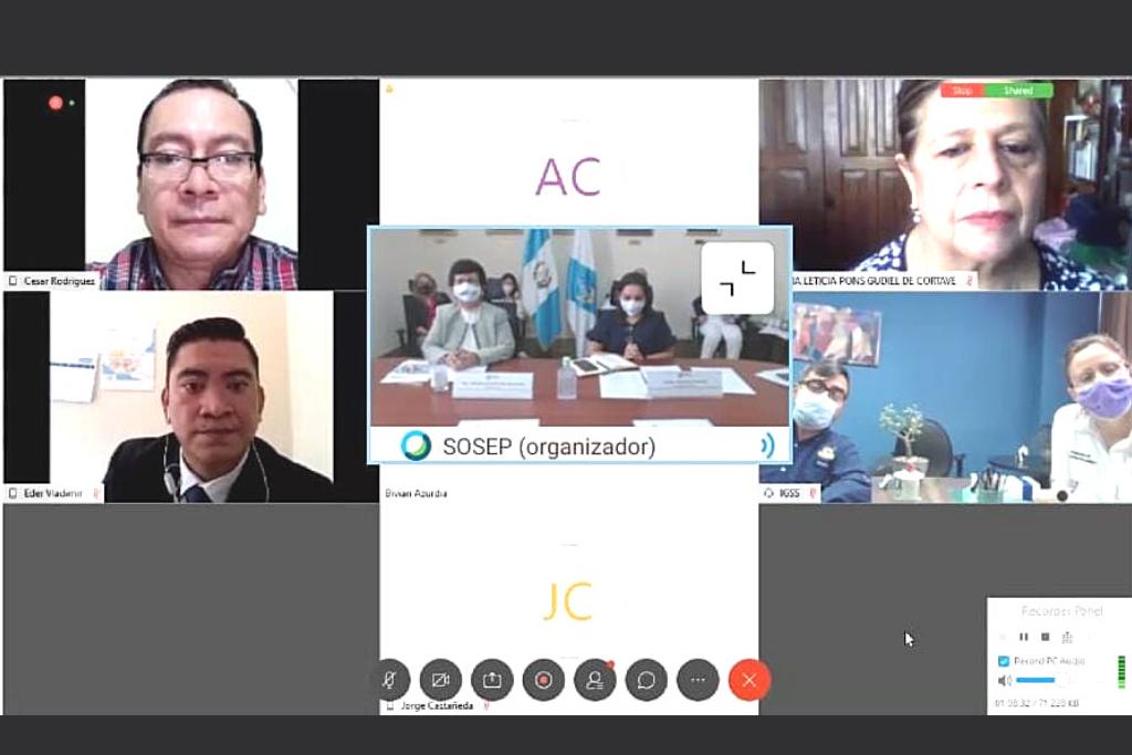 Representantes de MIDES, PGN, MINTRAB, MSPAS, IGSS y SOSEP en la reunión virtual de CONAPROV.