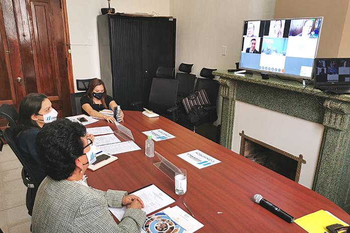 La secretaria Thelma Portillo, la subsecretaria Gabriela Guzmán, de SOSEP, participan en la reunión ordinaria de CONAPROV, de manera virtual.